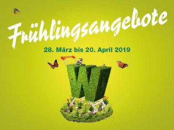 Frühlingsangebote im Wynecenter!